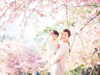 一足はやい さくら撮影会へのご参加ありがとうござました。 東京 代々木公園