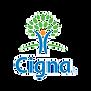 cigna_edited.png
