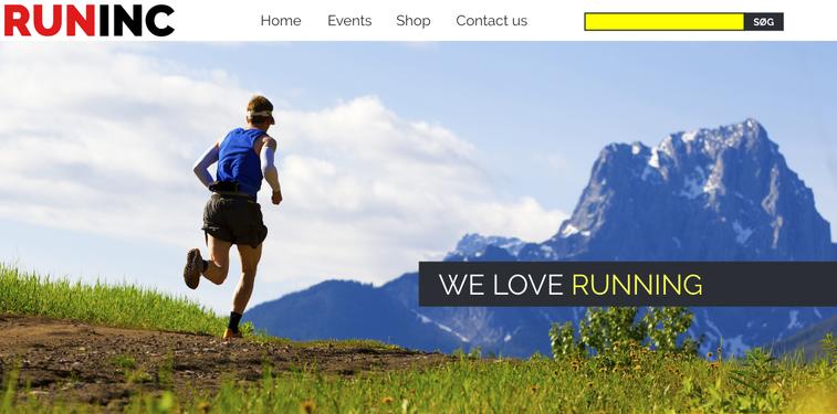 Runinc - Website.png