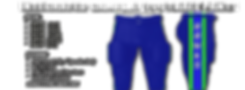 integrated FOOTBALL GAMEDAY PANTS2.png