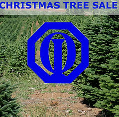 Gulf Breeze Optimist Christmas Tree Sale