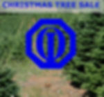 Gulf Breeze Optimist Christmas Tree Sale