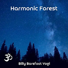 harmonic forest.png