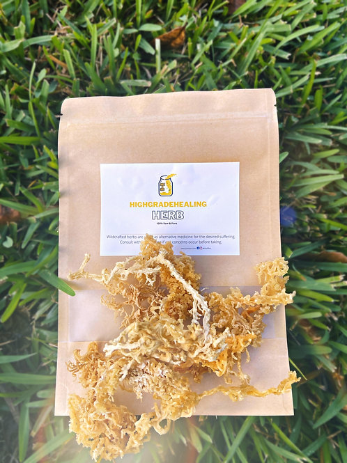 Wildcrafted golden Seamoss from Grenada 🇬🇩