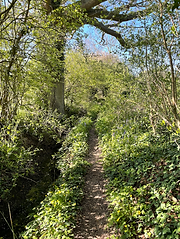 The path along KH584