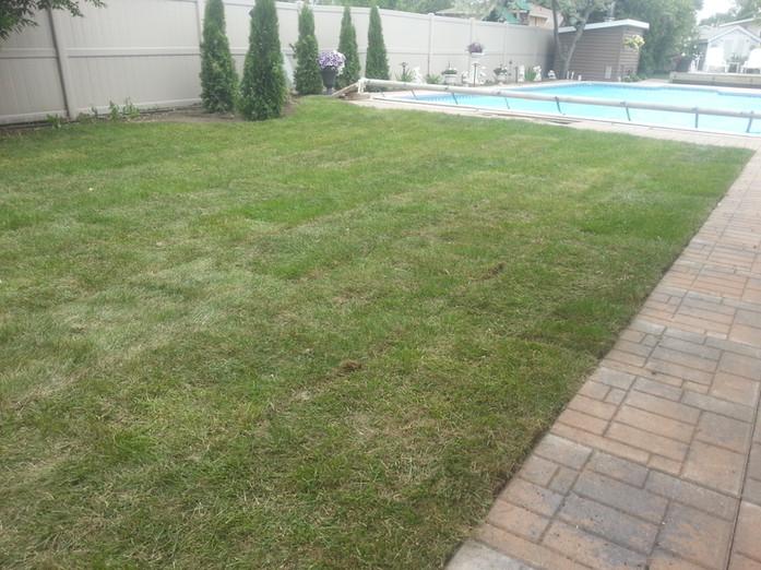 Lawn & Patio Block Installation