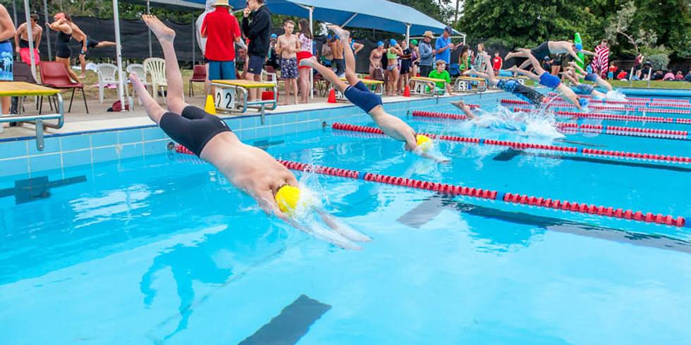 Summer Swimming Carnival