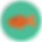 icons8-fish-64.png
