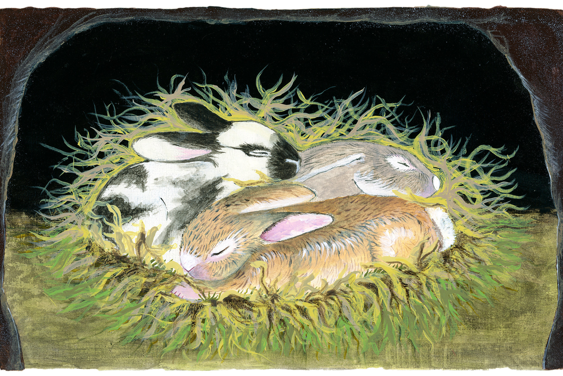 Asleep in the Burrow