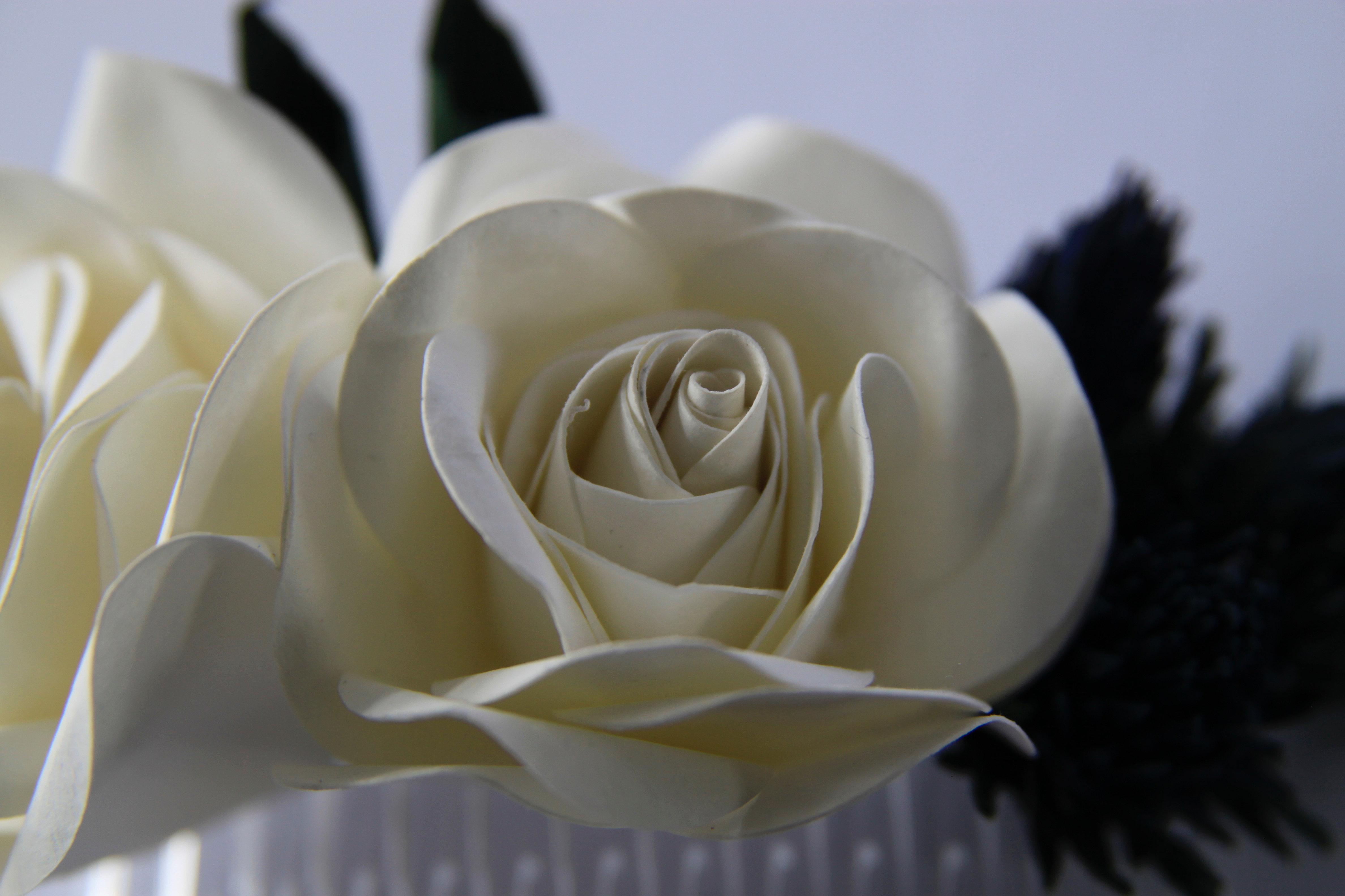 white rose hair comb