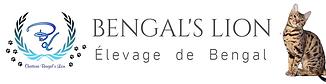 baniere bengals lion.png