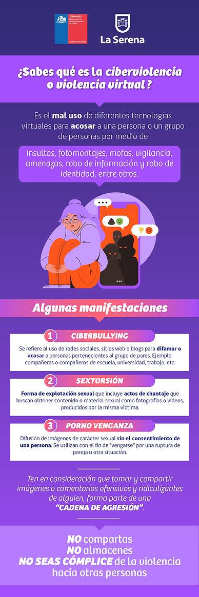 infografía ciberviolencia_page-0001.jpg