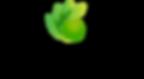 SB_Logo 1.png