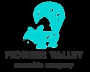 pioneer-logo-black.png