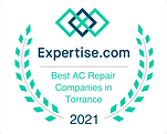 Expertise Award | Red Apple Air .png