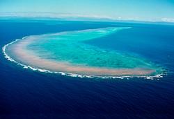 Arlington Reef