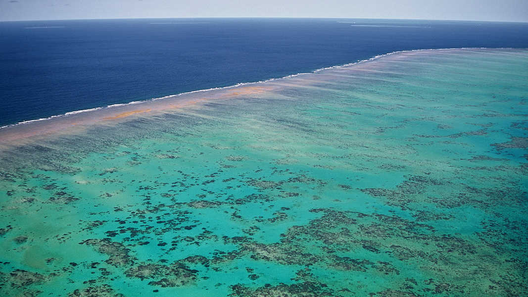 Outer Barrier Reef