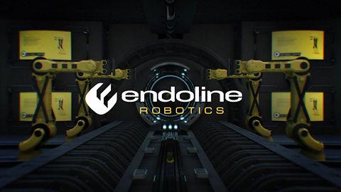 3D Video production for Endoline Robotics