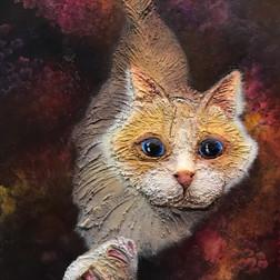 Curious Cat II
