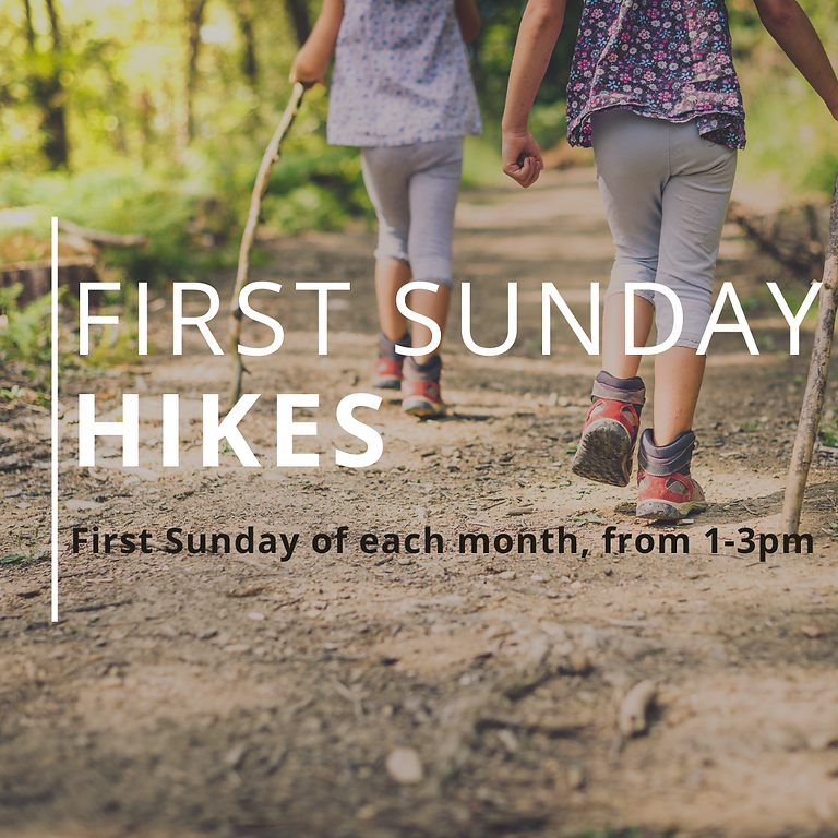 August's First Sunday Hike