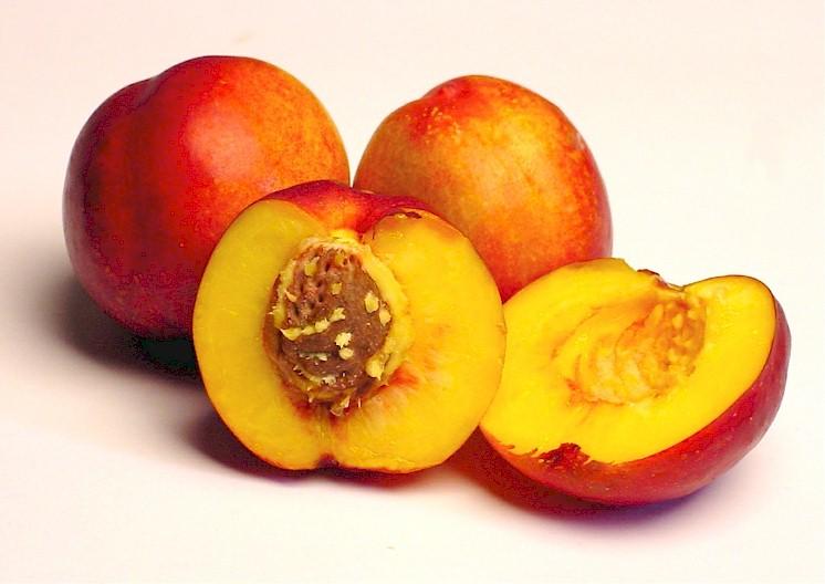 Nectarines-