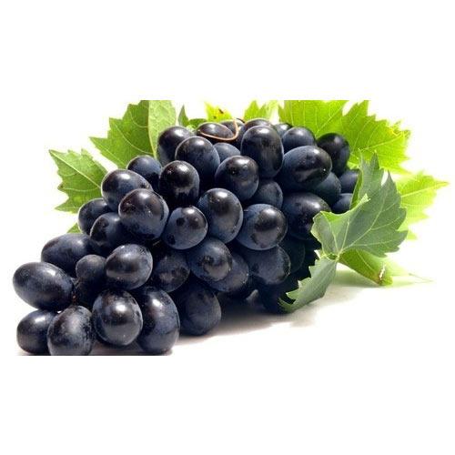 black-seedless-grapes-500x500