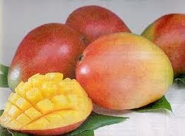 mango - kent