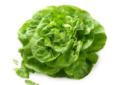 lettuce - butter