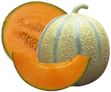 Melon - Charentais