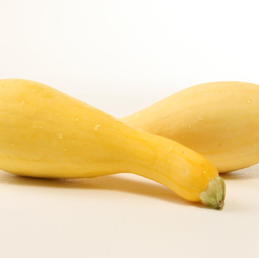 Squash-yellow