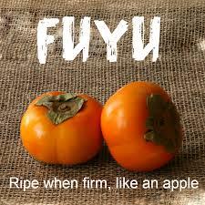persimmons fuyu