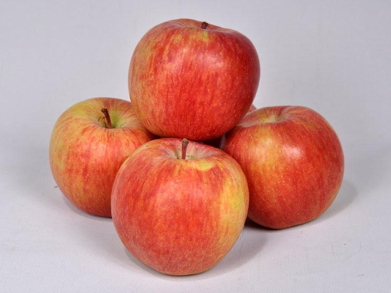 Apples fuji-