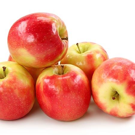 Apples Pink-Lady--Tree-3-450w
