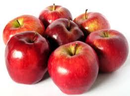 apples - mcIntosh