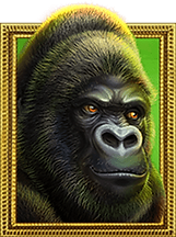 Silverback_Symbol_Gorilla.png