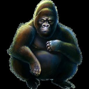 Silverback_Gorilla_2.png