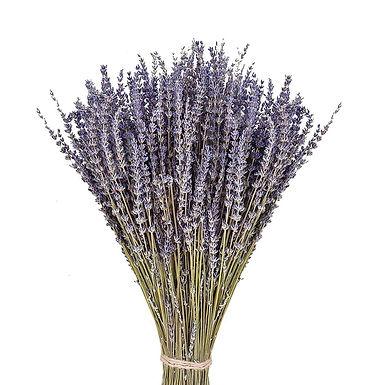 50-70Pcs Lavender Natural Dried Flower Bouquet