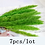 Thumbnail: Natural Dried Flowers Pampas Grass (20pcs)