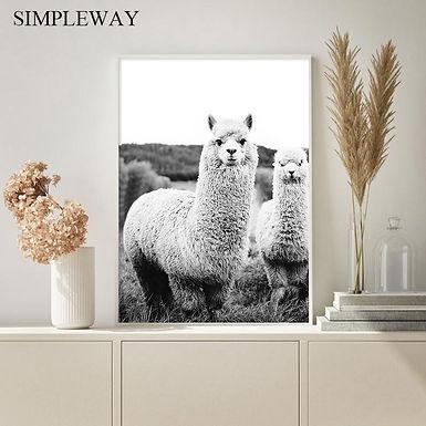 Alpaca Black White Wall Art Llama