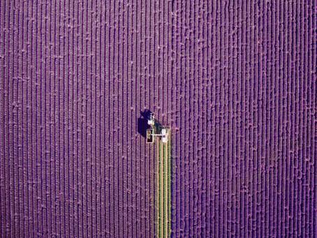 Les 10 plus belles photos prises par drone en 2016