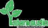Stem Audio Logo 5.29.20.png