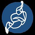 jitsi-logo-square.png