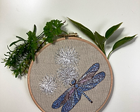 Dragonfly_kit2.png