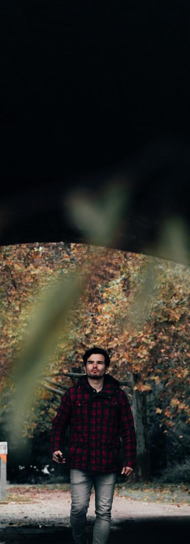 fall anfepo-2.jpg