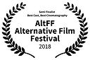 Alternative Film Festival award