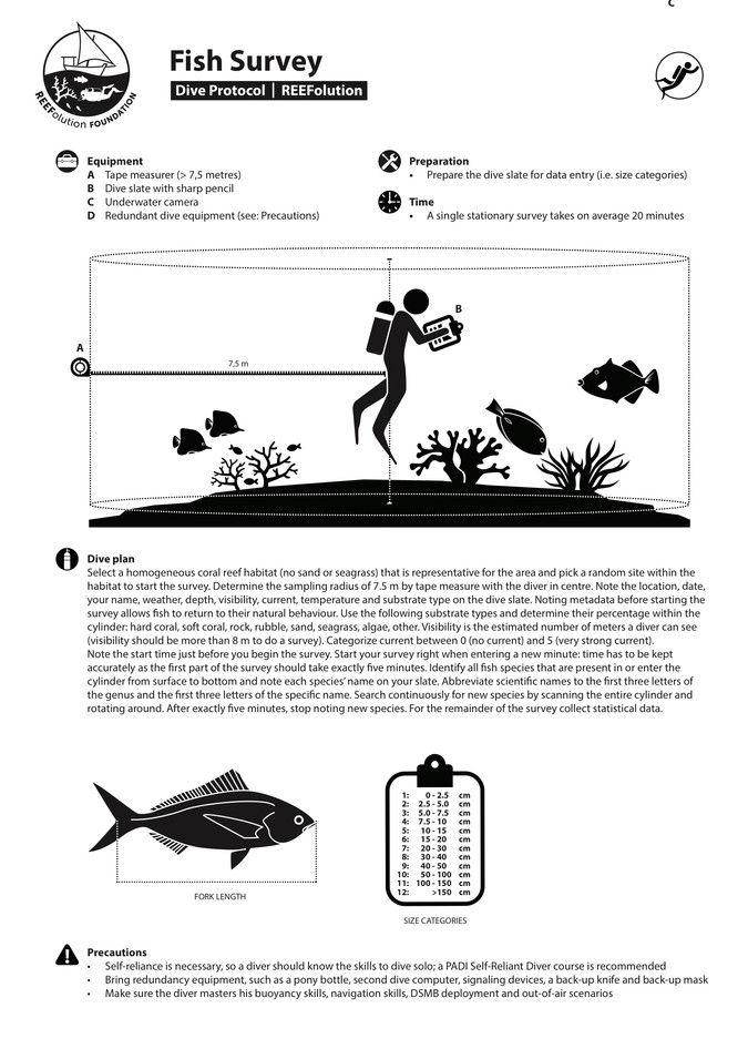 Dive Protocol