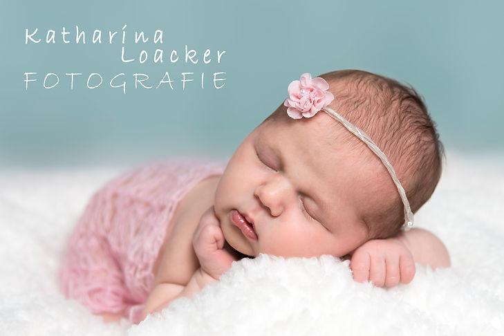 newborn fotografie katharina loacker