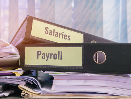 Shareholder Payments and Salary