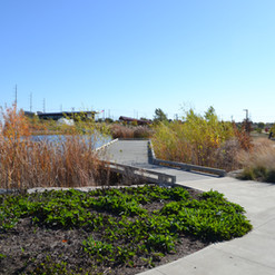 Mercy Park Boardwalk