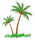 142-1421165_coconut-tree-clipart-png rig